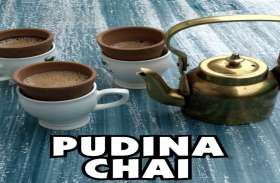 चाय तो दे पुदीना से ठंडा ठंडा एहसास, देखें वीडियो