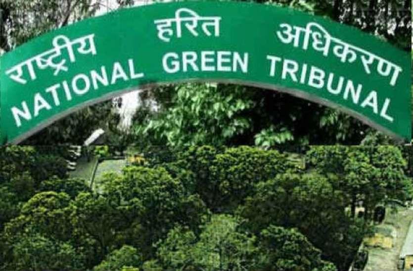 राष्ट्रीय हरित अधिकरण में 50 पदों के लिए निकली भर्ती, जल्दी करें आवेदन