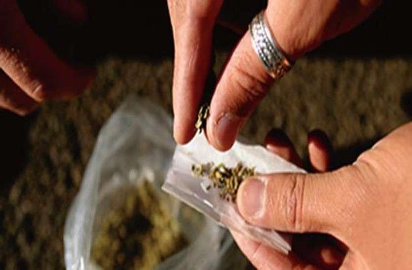 पंजाब के बाद अब नशे में 'उड़ता' राजस्थान,  मध्यप्रदेश से आ रहा मादक पदार्थ और कई जिलों में बेधड़क हो रहा सप्लाई
