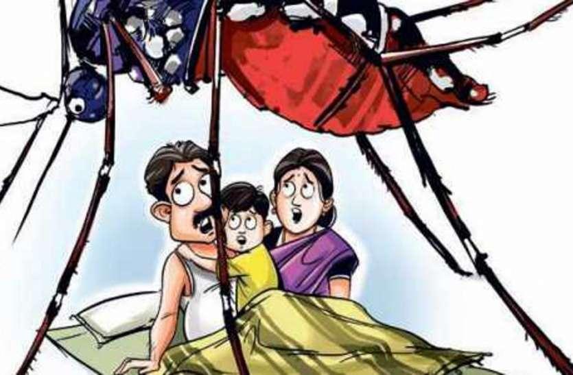राजधानी जयपुर में दौडी 4 हजार टीमें,लेकिन नहीं दिखा डेंगू