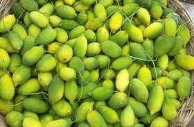 ये है दुनिया की सबसे ताकतवर सब्जी, जानलेवा बीमारियों को दूर कर शरीर को बना देगा फौलाद