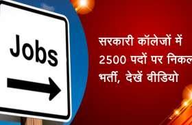 सरकारी कॉलेजों में 2500 पदों पर निकली भर्ती, देखें वीडियो