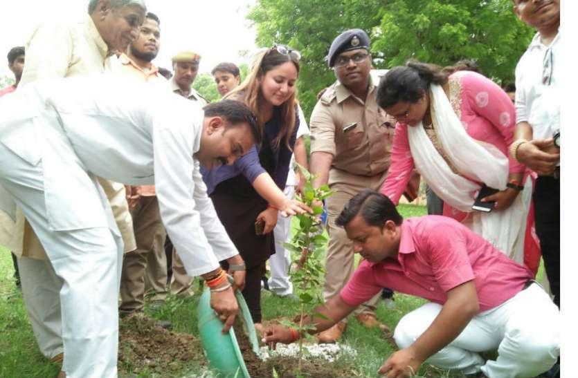 फिरोजाबाद की डीएम नेहा शर्मा ने एक माह में इतने पौधे लगाने का लिया संकल्प, पढिए ये खबर