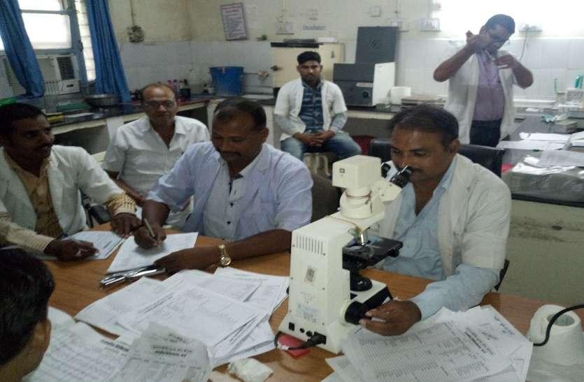 डेंगू के डंक ने उड़ाई नींद, बढ़ रहे रोगी, जिले में अब तक चिन्हित हुए 34 रोगी