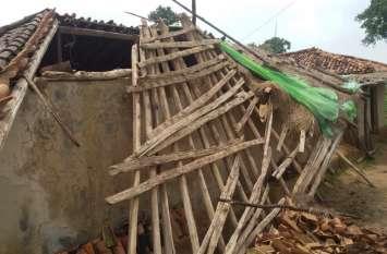हाथियों के कहर से छत्तीसगढ़ के शिमला में उजड़ गए कई घर, अब इसके लिए लगाने पड़ रहे चक्कर