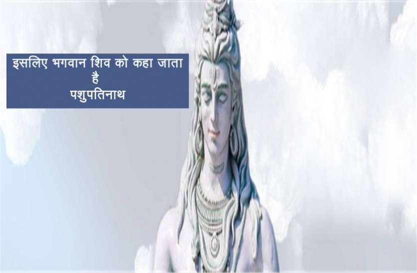 इसलिए भगवान शिव को कहा जाता है पशुपतिनाथ, जानें रहस्मय कारण