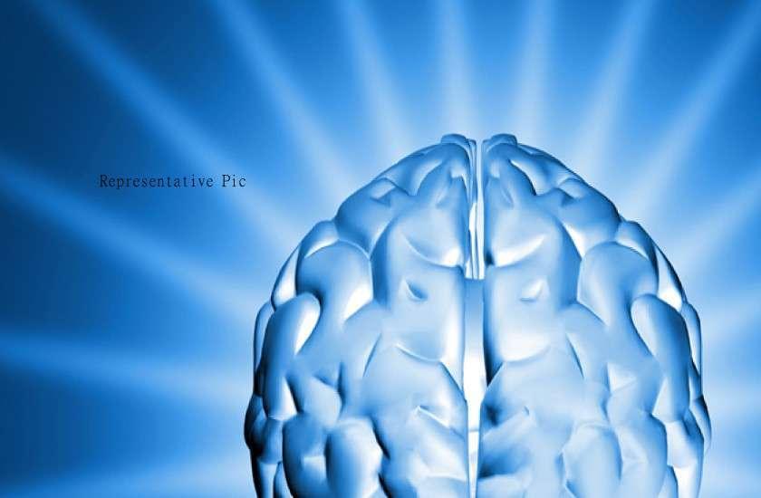 40 percent brain