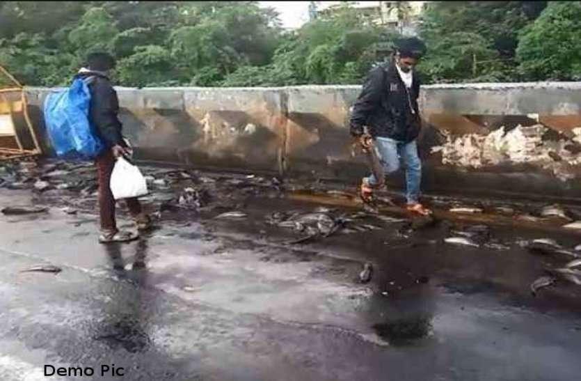 नेशनल हाइवे पर एक्सीडेंट के बाद घायलों और लाश को छोड़ मछलियां लूटने लगे लोग