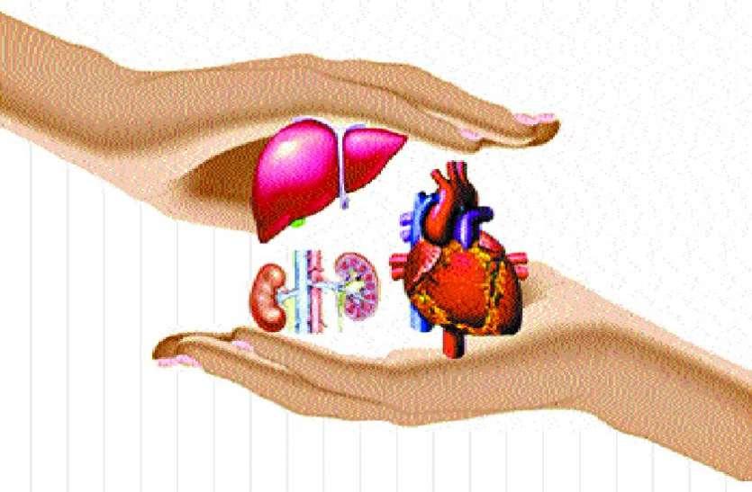 world organ donation day 2019: मरकर भी रहोगे जिंदा
