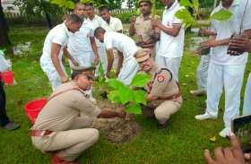 डीएम ने किया पौधा रोपण, लगाए गए दस लाख 54 हजार 245 पौध