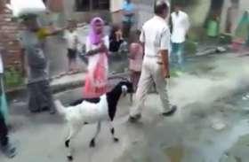 ग्राउंड रिपोर्ट: यूपी के इस गांव में बकरीद के पहले पुलिस उठा ले जाती है बकरे, नहीं होने देती कुर्बानी