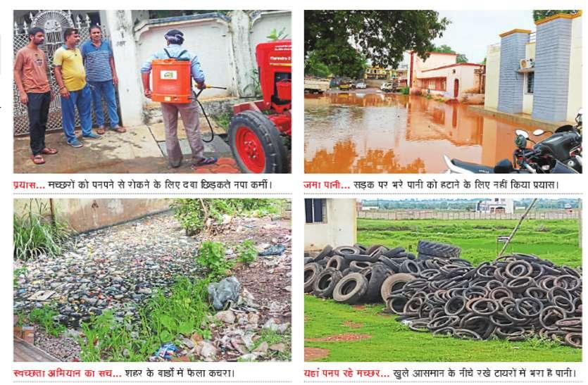 सावधान : शहर का कचरा, सड़कों में जमा पानी व गंदगी दे रही है डेंगू को न्यौता