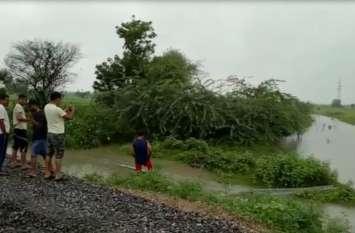 video : बर्ड विलेज मेनार सहित आसपास के क्षेत्र में 12 घण्टे से लगातार बारिश, नाले उफने..