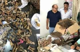 रायपुर के दो दुकानों में निकले इतने कंकाल, देख उड़ गए लोगों के होश, इस काम में होता था इस्तेमाल