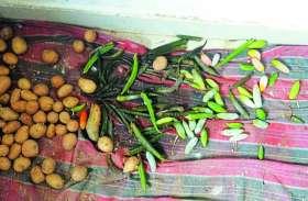 यहां चूहों के बीच रहकर बच्चे करते है सड़ी सब्जियों का लंच और डीनर