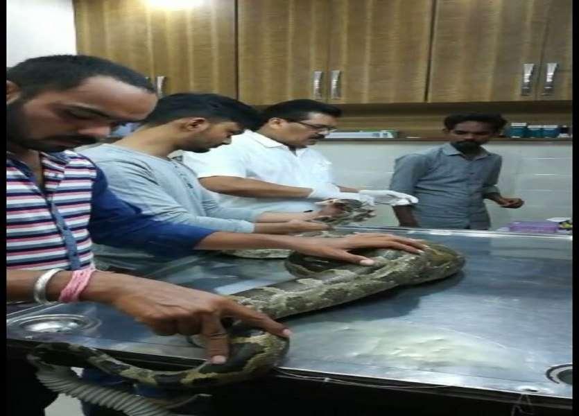 python operation