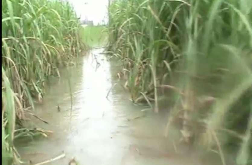 फर्रुखाबाद में गंगा-रामगंगा हुईं प्रलयकारी, बाढ़ पीड़ित सड़कों पर डाल रहे बसेरा