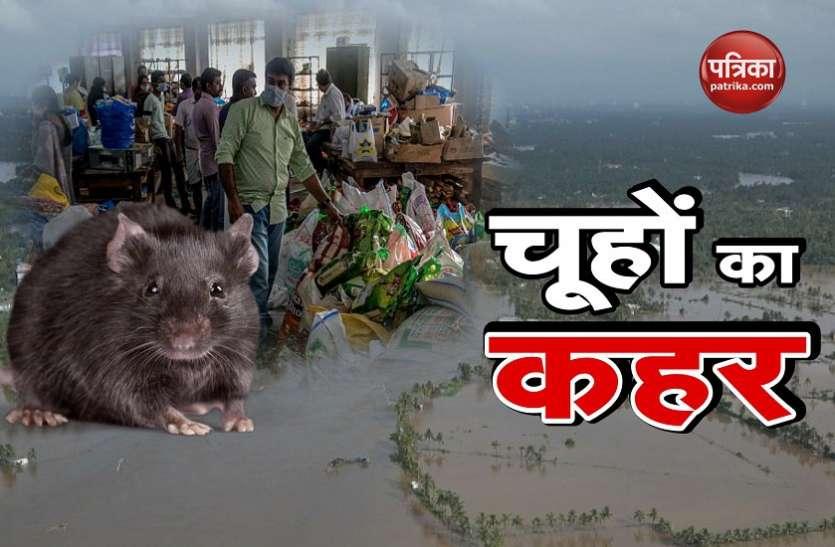 केरल: खतरनाक बुखार से 15 लोगों की मौत, 13 जिलों में अलर्ट जारी