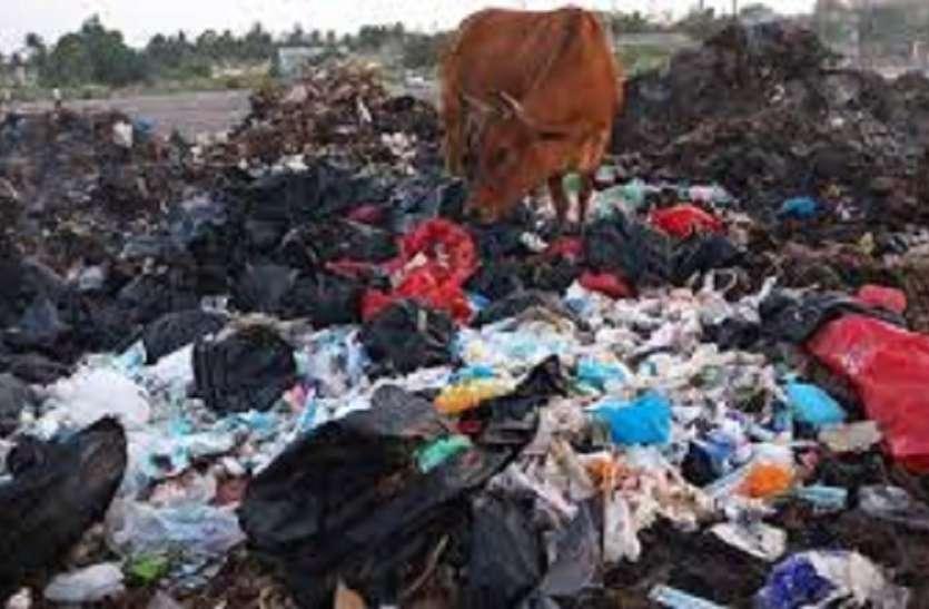 चर्चा का विषय बना हरिदेवपुर में प्लास्टिक में भ्रूण नहीं, मेडिकल वज्र्य