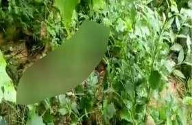 सोनभद्र में अवैध संबंध के शक में महिला की गला रेतकर हत्या, इस हालत में मिला शव