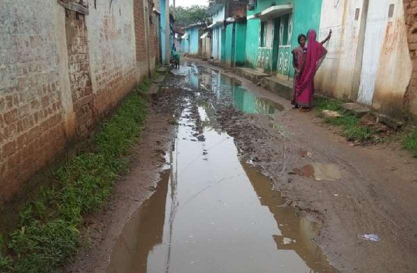 गौरव ग्राम की सड़कों का ऐसा है हाल, पैदल चलने से भी कतराते हैं ग्रामीण