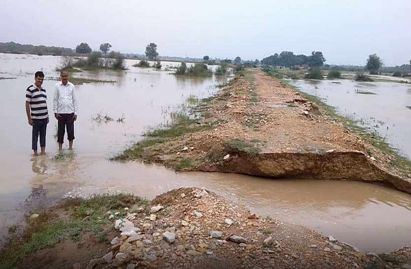 दौसा में पौने तीन इंच बारिश, कई तलाईयां टूटी, एनिकटों पर चली चादर, राजस्थान में 'भारी से भारी' बारिश की चेतावनी