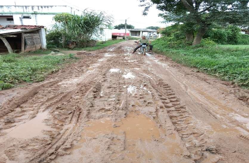 गांवों की सड़कें कीचड़ से सराबोर, आवागमन में हो रही दिक्कत