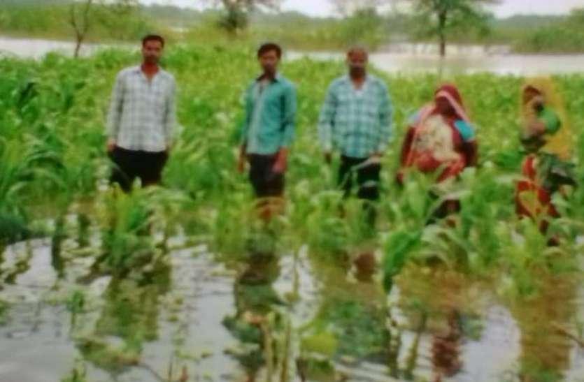 खेत में भर गया रैवा डेम का पानी