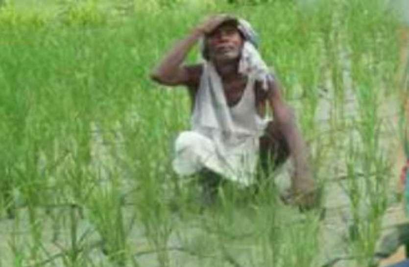 election 2018 - भाजपा-कांग्रेस दोनों को महंगी पड़ेगी किसानों की नाराजगी