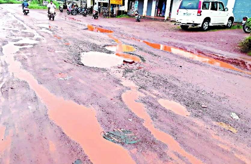 सरकार गा रही विकास का गान, दूसरी ओर सालों से सड़क की मांग कर रहे ग्रामवासी