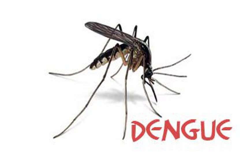 डेंगू के डंक का कहर : दुर्ग-भिलाई के बाद अब बालोद जिले में 31 मरीजों में से 10 को डेंगू की पुष्टि