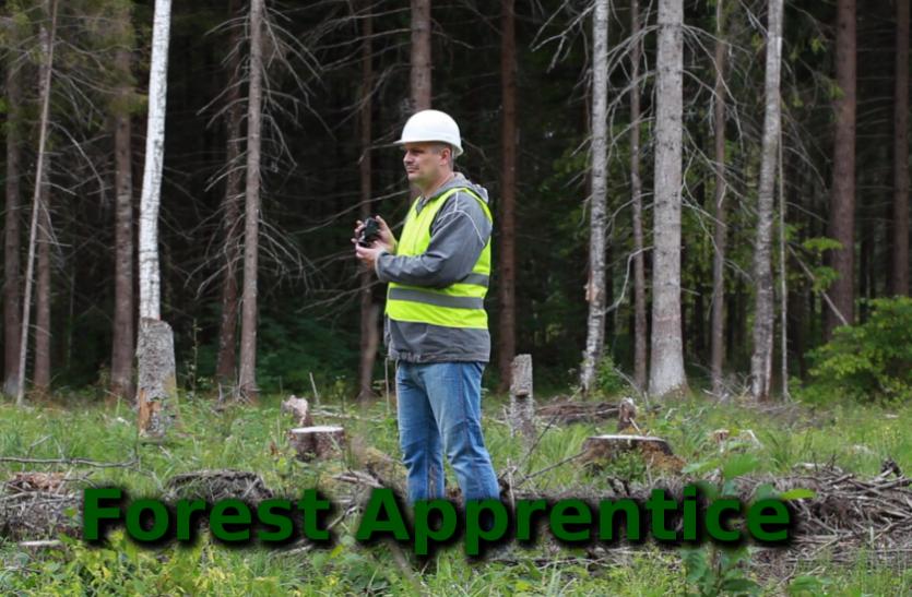 सरकारी नाैकरीः सहायक वन संरक्षक के पदाें पर निकली वैकेंसी, करें आवेदन