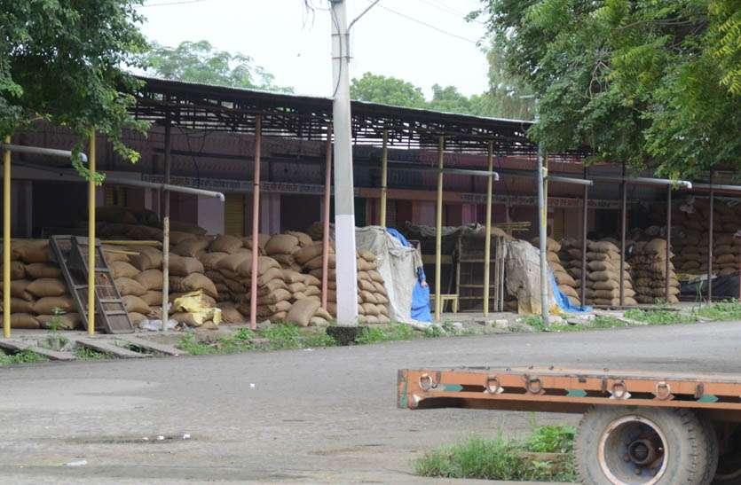 मण्डी में आज से शुरु होगा कारोबार, सहमति के बाद व्यापारियों ने किया निर्णय