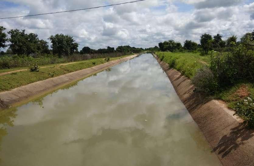 हरपुरा नहर परियोजना से भरे 8 तालाब, कुम्हेड़ी तालाब में पहुंचा पानी