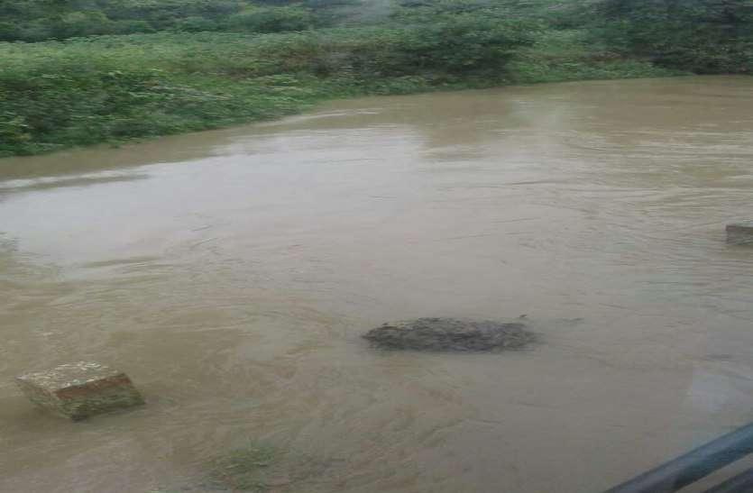 कौड़ी नदी फिर उफान पर, रायसेन का सांची और विदिशा से संपर्क टूटा