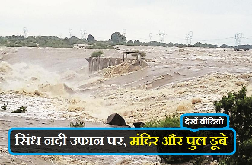 बड़ी खबर : सिंध नदी उफान पर, मंदिर और पुल डूबे, देखें वीडियो