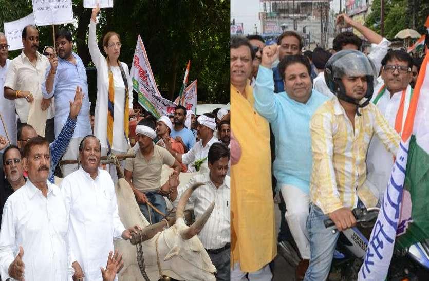 भारत बंद: विरोध प्रदर्शन में बैलगाड़ी से आईं अन्नू टंडन तो बाइक से पहुंचे राजीव शुक्ला