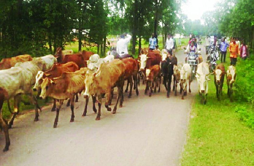 आवारा मवेशियों को छोड़ने की बात को लेकर ग्रामीणों में लगातार हो रहा विवाद