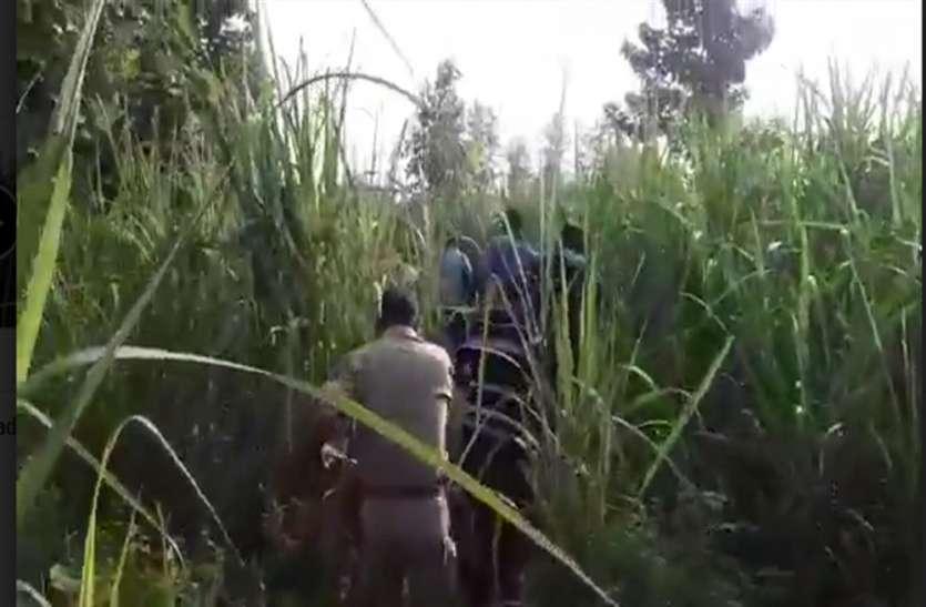 पुलिस मुठभेड़ के दौरान 7 बदमाश गिरफ्तार, एक गोली लगने से घायल