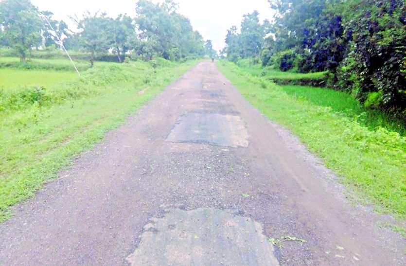 गुवत्ताहीन निर्माण: पानी में धुल रहा डामरीकृत प्रधानमंत्री सड़क