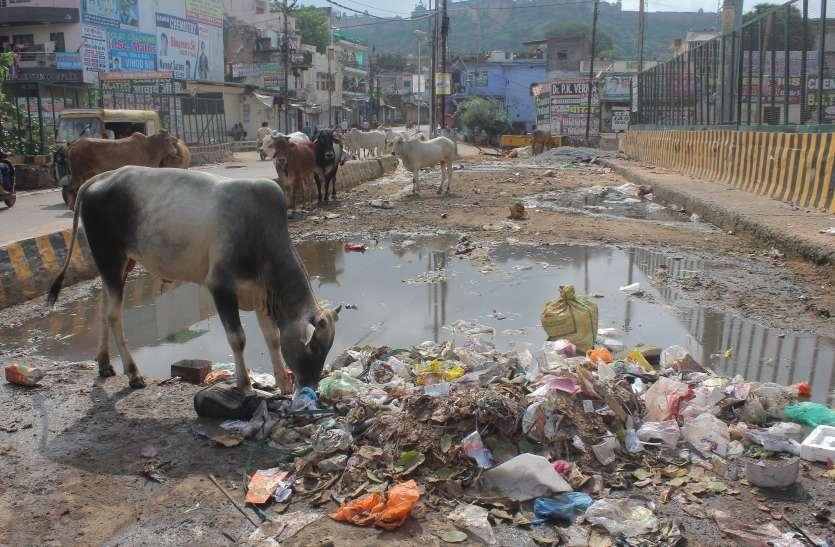 गंदगी से पटा अटलजी का शहर, अफसरों ने लगाया मोदी के स्वच्छता अभियान को पलीता