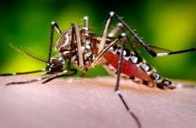बरसात के बाद दिल्ली में डेंगू का प्रकोप बढ़ा, बीते एक हफ्ते में 30 नए मामले आए सामने