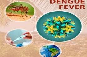केवल प्लेटलेट्स की कमी होना ही डेंगू नहीं, ये भी हैं बड़े कारण