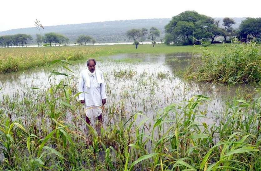 वेस्टवेयर की ऊंचाई बढ़ाने से तालाब के समीप स्थित खेतों में घुसा पानी, फसलें हुई खराब