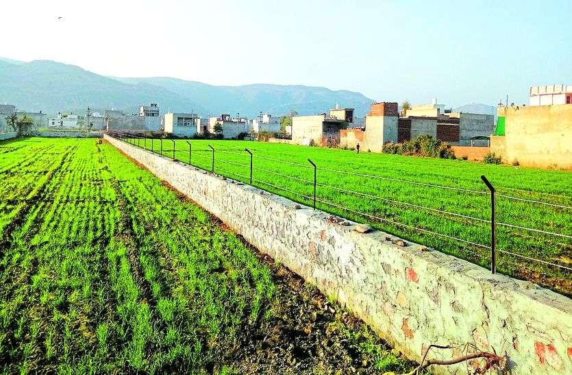 राजस्थान के इस बांध की 160 बीघा जमीन पर भू-माफियाओं ने जमाया कब्जा, प्रशासन में मचा हडक़ंप