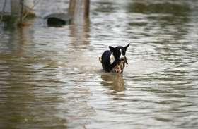 दिल्ली-NCR में हल्की फुहारों से मौसम बना रहेगा सुहाना, पश्चिम बंगाल-बिहार समेत कई राज्यों में जोरदार बारिश की संभावना