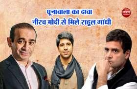 पूनावाला का दावाः दिल्ली के होटल में नीरव मोदी से मिले थे राहुल गांधी, 'मैं लाई डिटेक्टर टेस्ट के लिए तैयार'
