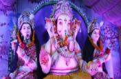 Video: कोरबा के गणेश सेवा समिति टीपी नगर में आज गणेश जी की पूजा ,आरती