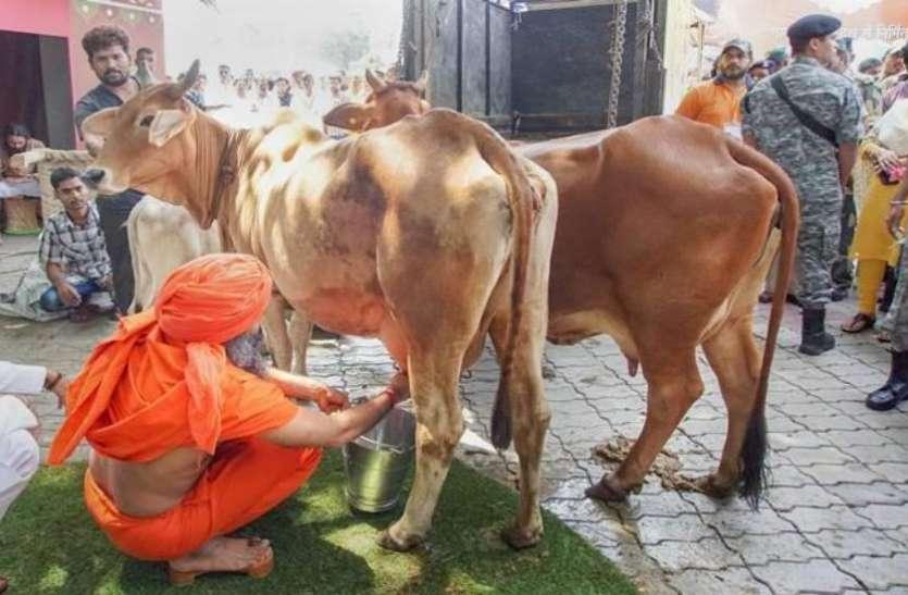 बाबा रामदेव ने दूध दही बेचना तो शुरू कर दिया, लेकिन खरीदने से पहले जान लीजिए असली सच्चार्इ