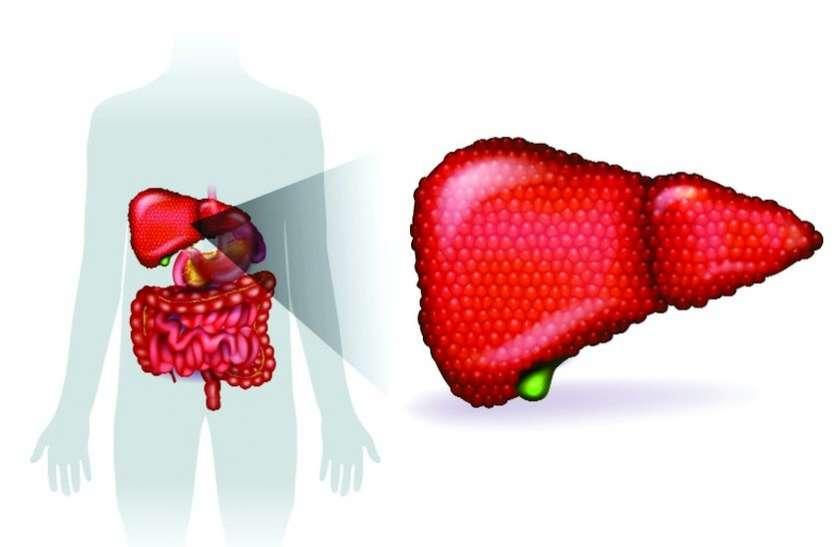 हेपेटाइटिस बी का कोई निश्चित उपचार नहीं है पर रोकथाम की जा सकती
